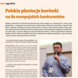 Polskie plantacje borówki...