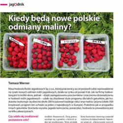 Kiedy będą nowe polskie...