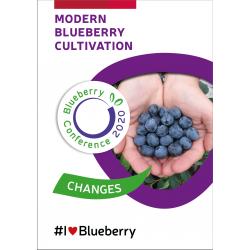 Modern blueberry...
