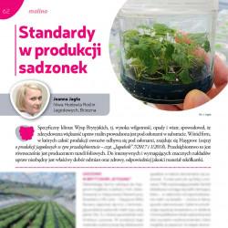 Standardy w produkcji sadzonek