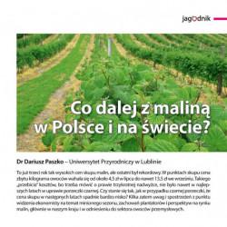 Co dalej z malina w Polsce...