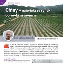 Chiny – największy rynek...
