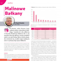 Malinowe Bałkany