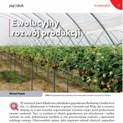 Ewolucyjny rozwój produkcji