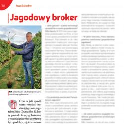 Jagodowy broker