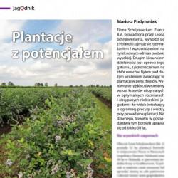 Plantacje z potencjałem