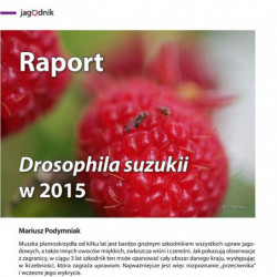 Raport. Drosophila suzukii...