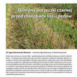 Borówka z Wielkopolski