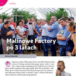 Malinowe Factory po 3 latach