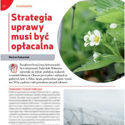 Strategia uprawy musi być...
